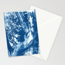 Histoire d'arbre, cyanotype. Stationery Cards