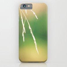Nidi di ragni iPhone 6s Slim Case