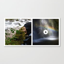 The Search Waterfall Diptych Canvas Print
