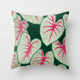 Caladium Bicolor Throw Pillow
