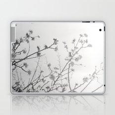 Rising Dawn Laptop & iPad Skin