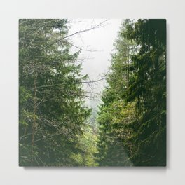 Westwitch Woods Metal Print