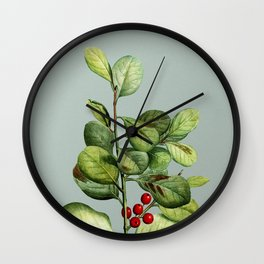 Vintage Lingonberry Evergreen Shrub Botanical Illustration on Mint Green Wall Clock