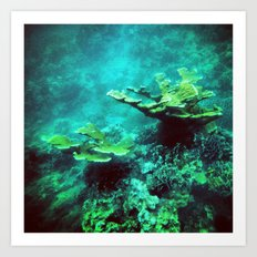 Under the Sea Coral Reef Caribbean Art Print