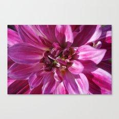 flowerpower Canvas Print