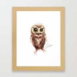 cute owl - gufo - hibou - búho Framed Art Print