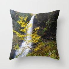The summer ends  Throw Pillow