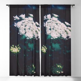 Anne's Lace Blackout Curtain