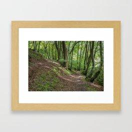 Up or Down Framed Art Print