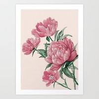 Flowers 22a Art Print
