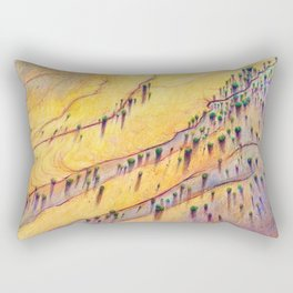 Birds-eye Sunset Rectangular Pillow