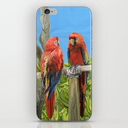 Scarlet Macaw Parrots Perching iPhone Skin
