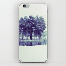 Mirror Lake iPhone & iPod Skin