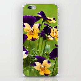 Viola Flowers iPhone Skin
