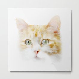 Ginger Tabby Cat Art  Metal Print