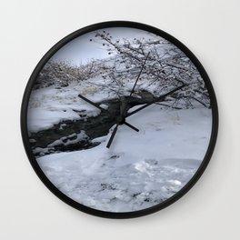 Homestead Crater Wall Clock