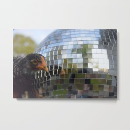 Chicken Disco Metal Print