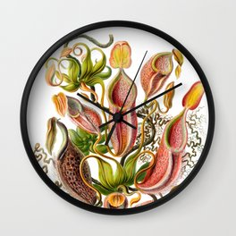 Ernst Haeckel Nepenthaceae Pitcher Plant Wall Clock