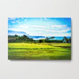 Silent Sage 0009 Kauai Metal Print