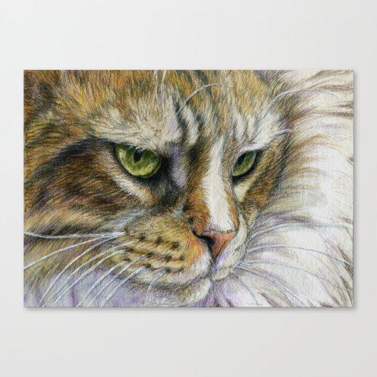 Cat portrait 806 Canvas Print