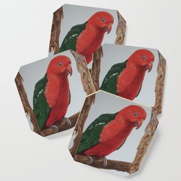 King Parrot Coaster
