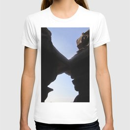 the flight home T-shirt