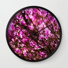 Purple Phododendron Flowers In Spring Wall Clock