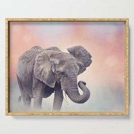 African Elephant walking in the grassland at sunset Serving Tray
