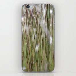 Wispy on green and magenta reeds iPhone Skin