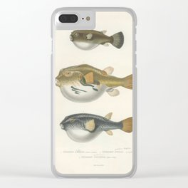 Naturalist Pufferfish Clear iPhone Case