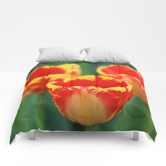 Happy Tulips Comforters