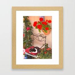 Italian Cat-Cinque Terra Framed Art Print