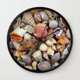 Seashell Collection from Florida Wall Clock