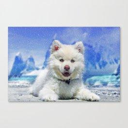 Winter Snowdog Canvas Print