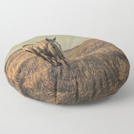 Dusk Floor Pillow