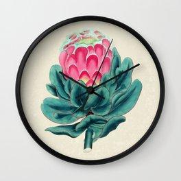 Protea flower garden Wall Clock