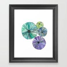Hawaiian Sea No. 2 Sea Urchins Framed Art Print