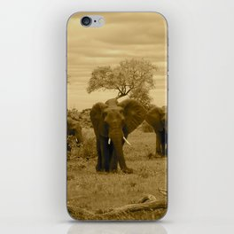 Elephant sepia iPhone Skin