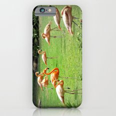 Flamingo Slim Case iPhone 6s
