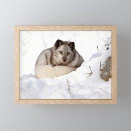 Sweet fox in winter Framed Mini Art Print