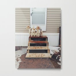 My Darling Companions Metal Print