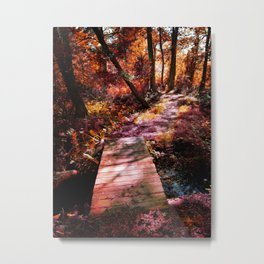 Wooden Bridge in the Autumn Woods Metal Print