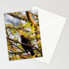 Favorite Song Stationery Cards