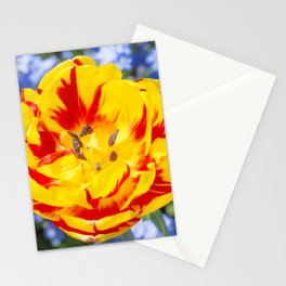 Floral Patterns. Stationery Cards