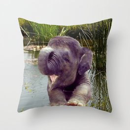 Elephant and Water Throw Pillow