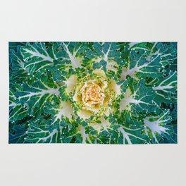 Decorative cabbage pattern Rug