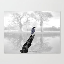 Crow On Misty Pond A114 Canvas Print