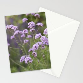 Longwood Gardens - Spring Series 159 Stationery Cards