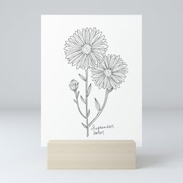 September Birth Flower Aster Ink Drawing / Black and White Aster / Floral Art Mini Art Print