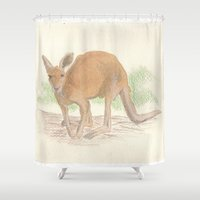 kangaroo Shower Curtains featuring Kangaroo. by Mariel Castro